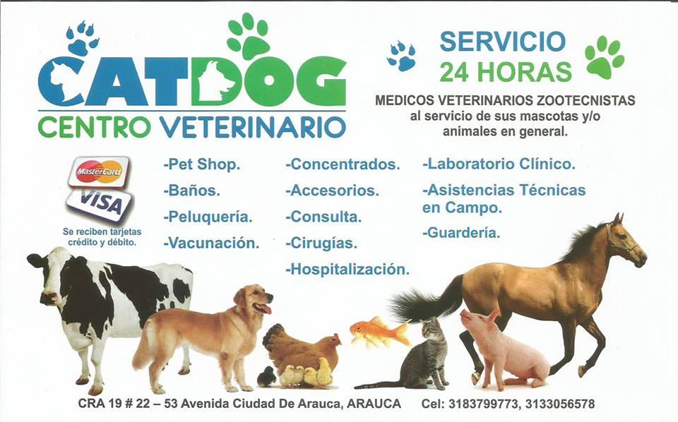 Catdog Veterinaria Veterinaria En Arauca Arauca City